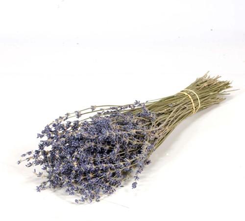 Lavendel Natural Dark Blue bundel 100gr Lavendel Natural Darkblue