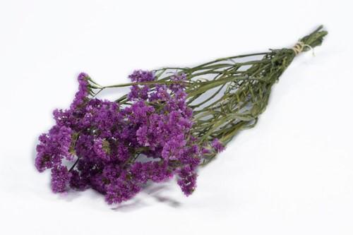 Statice sinuata natural Purple/Pink  Lamsoor