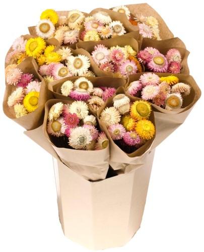 Droogbloemenboeket Helichrysum in craft Droogbloemenpakket in kraft