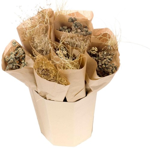Droogbloemenmix curly grass/eucalyptus fruit/bupleurum droogbloemboeketten 3 verschillende in kraft