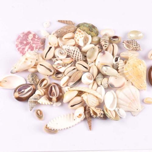 Schelpenmix met klein gaatje voor sieraden +/- 50st schelpjes voor sieraden