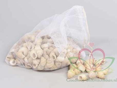 Umachi schelpen naturel, 250 gram