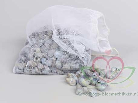 Umachi schelpen blauw, 250 gram