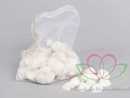 White Chippy schelpen 500 gram