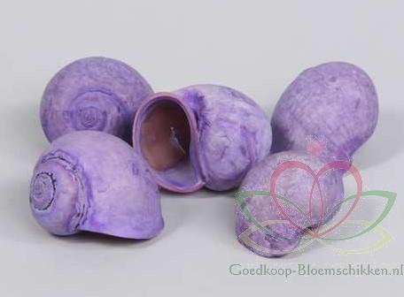 Nattai schelpen lila-paars washed, 1 kilo