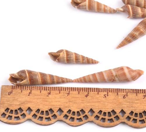 Kerala schelpen met klein gaatje voor sieraden +/- 20st 30-43mm schelpjes voor sieraden  -3