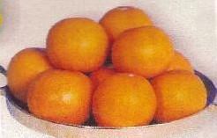 'Gold Apple of Pomme d''Or' 'Gold Apple of Pomme d''O