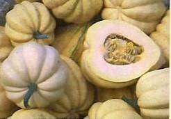 T Sanders Sweet potato - basiseenheid T Sanders Sweet potato