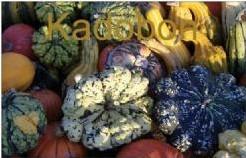 Cadeaubon Kadobon - Basiseenheid Cadeaubon Kadobon