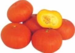 Small Orange F1  Small Orange F1