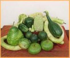 Lagenariamix grote vruchten - 500 zaden Lagenariamix grote vrucht