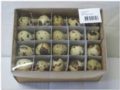 Kwarteleitjesdoosje 60 st Kwartel eitjes