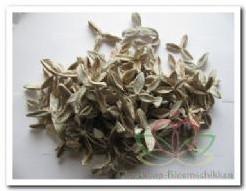 Cotton Pau terra Estrela frosted white 250 g katoenster