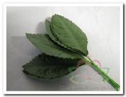 Blad zijde blaadjes LARGEop dr mosGroen +/-50 st zijdeblaadjes