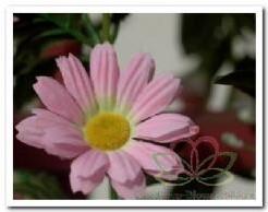 Gerbera zijde bloemen guirlande l roze Gerbera zijde