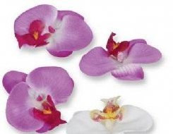 Orchidee hoofd Purple 8. 5 cm. Prijs voor pak 8 stuk Orchidee hoofd