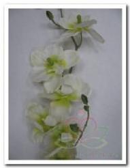 Orchidee Wit -Groen +/- 7 bloemen / tak Orchidee Wit -g