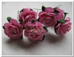 Mulberry Roosjes Rose10-15 mm / PAK Mulberry Roosje