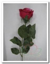 Roos kunstroos zijde Donker Rose 2tone doos 24 op= Roos kunstroos