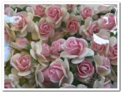 Mulberry White + Pink 2 cm. 50 Roses Mulberry White