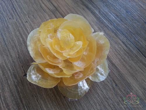 Bloemschelpen geel, +/- 100 gram