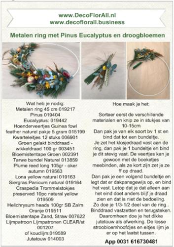 DIY pakket metalen ring met Pinus, Eucalyptus en droogbloemen Zelf Flowerhoop maken