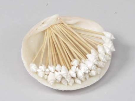 Tigrina White Nass - schelpen op een stokje 50 stuks