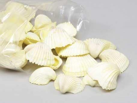 Chippy Pastel schelpen yellow washed, 1 kilo