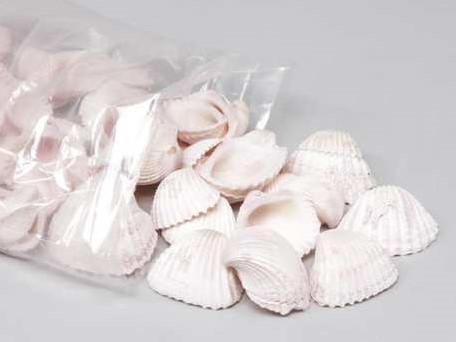 Chippy Pastel schelpen pink washed, 1 kilo