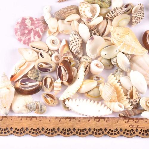 Schelpenmix met klein gaatje voor sieraden +/- 50st schelpjes voor sieraden  -2