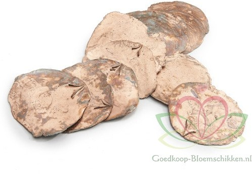 Capiz shell Camar Koper 500 gram Geverfde schelpen