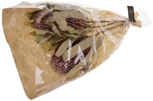 Banksia Menziesii 3pc ca. 30-40cm - Natural Boeket in krafthoes