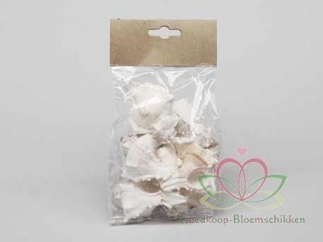 White Mulli schelpen 250 gram