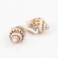 Leopardprint schelpen met klein gaatje voor sieraden +/- 50st +/-10-16 mm kleine schelpjes voor sieraden  -2