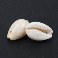Cowrie Cowry schelpen met klein gaatje voor sieraden +/- 50st +/-18 mmschelpjes voor sieraden  -2