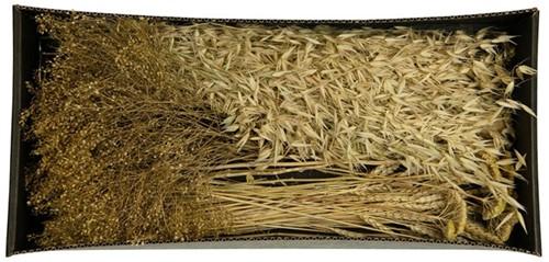 Droogbloempakket Dried flowers mix tray Naturel droogbloem boeketten zelf maken
