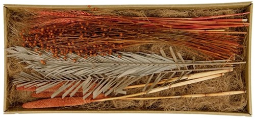 Droogbloempakket Exotic mix tray Terracotta droogbloem boeketten zelf maken