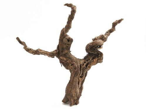 Druivenstronk 40-50 cm naturel stronk