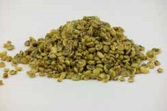 Umbonium schelpen geel, 200 gram