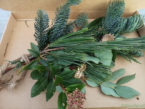 KerstToef Med met Pinus en Nobilus door de brievenbus Een groet die iets doet