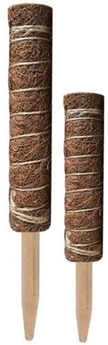 Mosstok Kokosstok Planten totems Set 50 + 30 cm Opbinden van planten