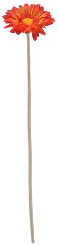 Gerbera 54 cm Oranje FS Gerbera