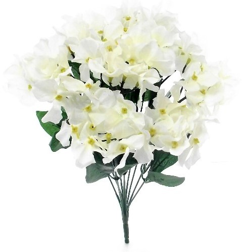 Hortensia 11HYDRANGEA BUSH WIT35 cm. flowerwall vuller