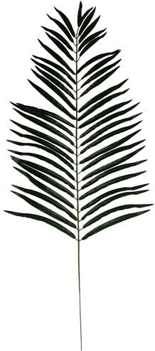 116cm. GIANT PALMLeaf Palmblad Groen /st botanical style