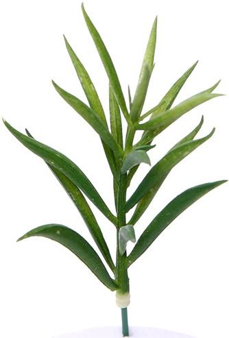 15cm. ARTIFICIAL SUCCULENT GREEN GRAS Succulent