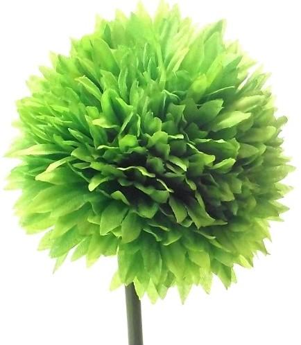 Chrysant 43cm. SINGLE SPIKY CHRYSANTHEMUM LIME GREEN Spiky Chrystant