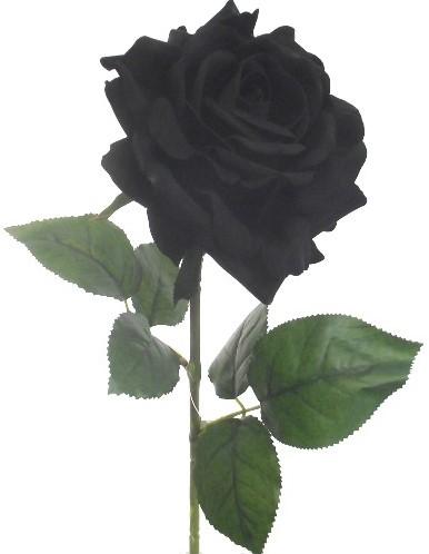Luxury Grote Zwarte Roos zijde 74 cm. /stuk  Zwarte roos