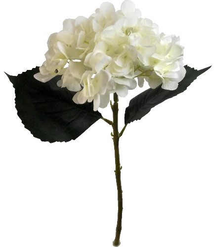 Hortensia 46cm. SINGLE HYDRANGEA IVORY Hortensia Ivory