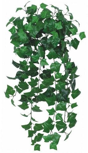 Hanger vuller Hedera Groen  Groen e hangplanten
