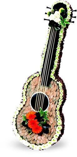Akoestische gitaar steekschuimvorm